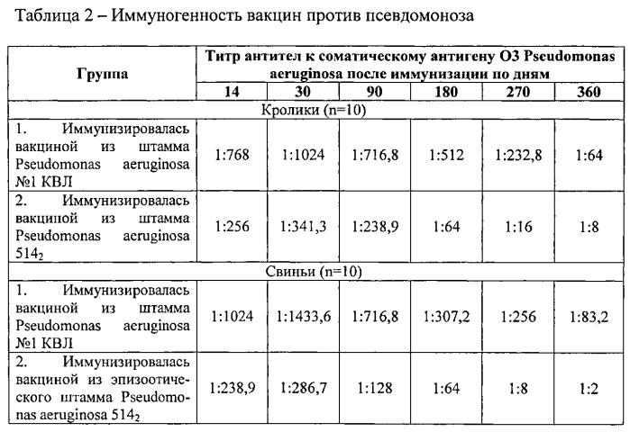 Штамм бактерий pseudomonas aeruginosa для изготовления вакцины против псевдомоноза свиней