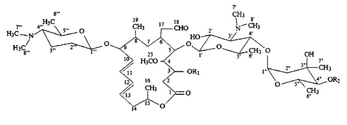 Генетически модифицированный бактериальный штамм wsj-ia, продуцирующий изовалерилспирамицин i с высоким содержанием и высоким выходом