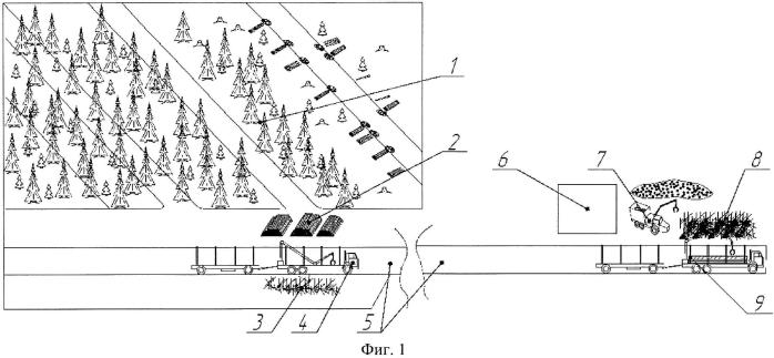 Способ заготовки и вывозки дров и лесосечных отходов от лесных участков к котельным