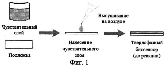 Способ определения катехоламинов и их метаболитов с использованием твердофазного флуоресцентного биосенсора