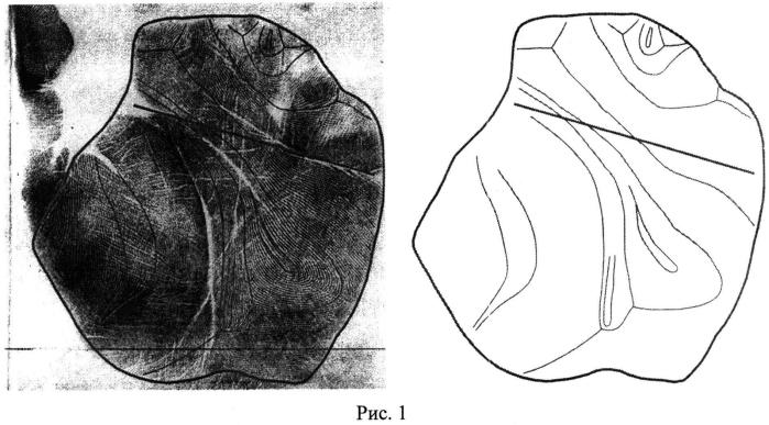 Способ формирования представления (шаблона) папиллярных узоров ладони человека