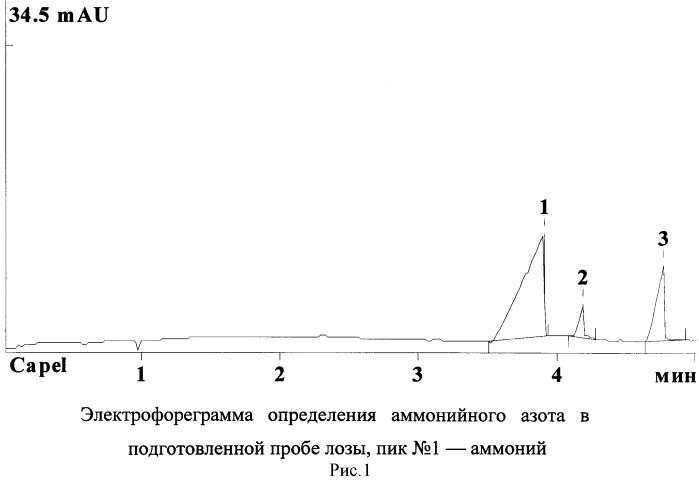 Способ определения общего азота методом капиллярного электрофореза