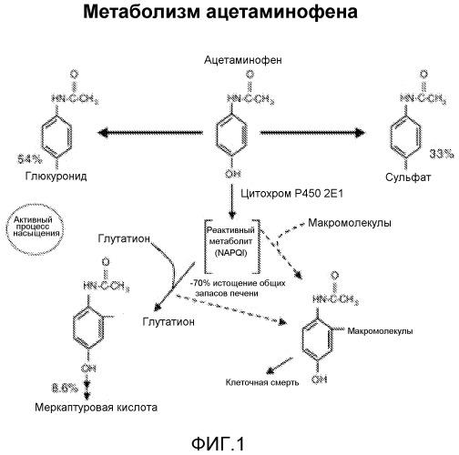 Глюкуронидированный ацетаминофен как маркер расстройств печени