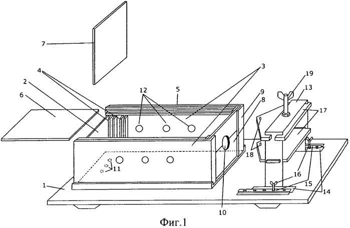 Устройство для фиксации лабораторных животных
