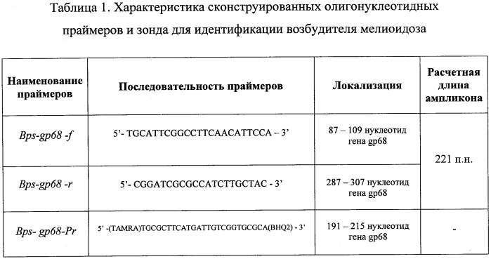 Набор олигонуклеотидных праймеров и флуоресцентно-меченого зонда для идентификации burkholderia pseudomallei