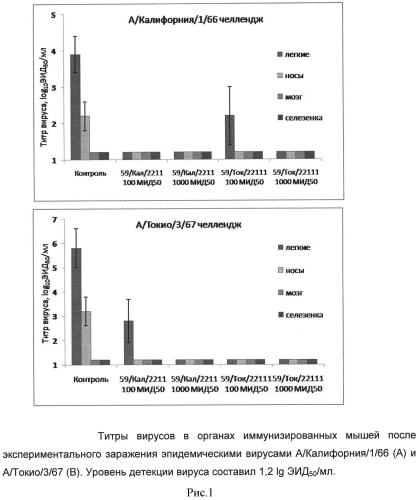 Аттенуированный холодоадаптированный штамм вируса гриппа а/рr/8/59/m2 (h1n1), предназначенный для получения вакцинных штаммов вируса гриппа в качестве донора аттенуации, вакцинные штаммы вируса гриппа а/59/м2/калифорния/66/2211 (н2n2) и а/59/м2/токио/67/22111 (н2n2)