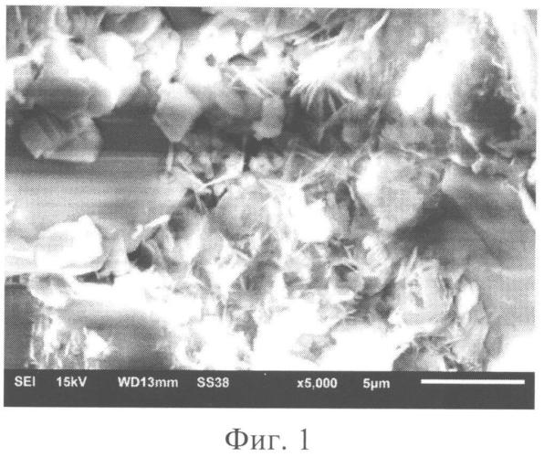 Способ подготовки диэлектрических образцов для исследований на растровом электронном микроскопе