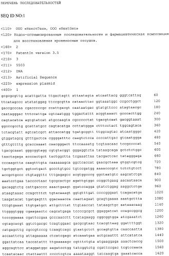 Кодон-оптимизированные последовательности и фармацевтическая композиция для восстановления кровеносных сосудов