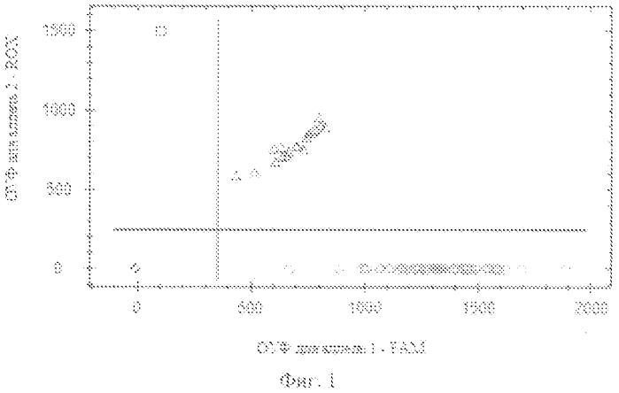 Способ прогнозирования веса новорожденного с учетом полиморфных вариантов локуса 10976 g/afvii