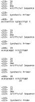 Система анализа для обнаружения близкородственных серотипов вируса папилломы человека (впч)