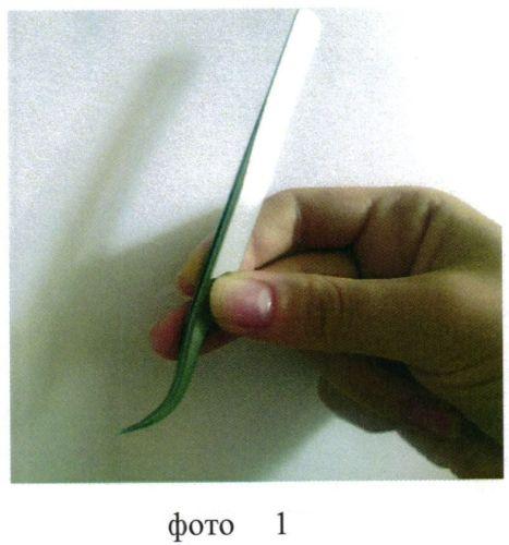 Способ объемного наращивания естественных ресниц искусственными ресницами путем их приклеивания друг к другу