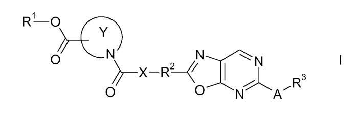 Гетероциклические производные карбоновых кислот, имеющие 2,5-замещенное оксазолопиримидиновое кольцо