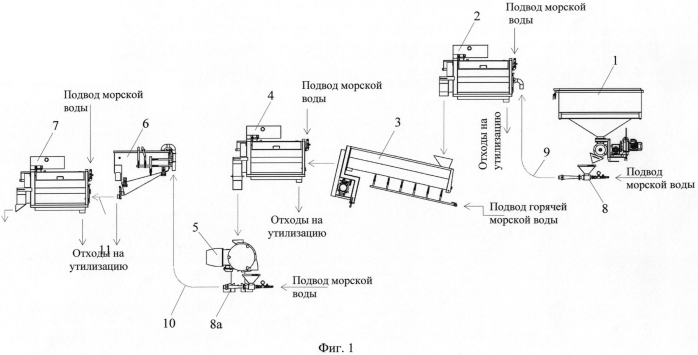 Технологическая линия для получения очищенного мяса из мелких креветок