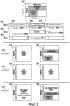Способ и устройство отображения ресурсов в системе ofdm