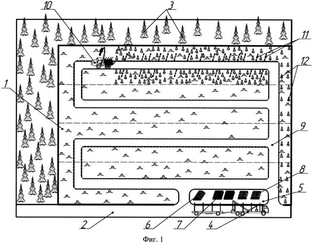 Способ высадки посадочного материала с закрытой корневой системой лесозаготовительной машиной