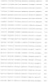 Плазмида для экспрессии в клетках сно рекомбинантного фолликулостимулирующего гормона (фсг) человека, плазмида для экспрессии в клетках сно бета-субъединицы рекомбинантного фсг человека, клетка сно - продуцент рекомбинантного фсг человека и способ получения указанного гормона