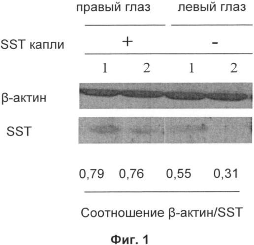 Местный глазной пептидный состав