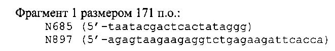 Гибридный белок на основе l-аспарагиназы wolinella succinogenes, штамм escherichia coli - продуцент гибридного белка (варианты) и способ получения гибридного белка, обладающего противоопухолевой активностью