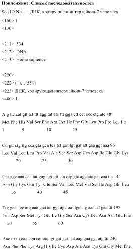 Штамм культивируемых клеток cho-il7/13 - продуцент интерлейкина-7 человека