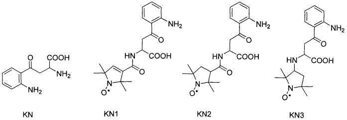 Спин-меченое производное кинуренина и способ его получения