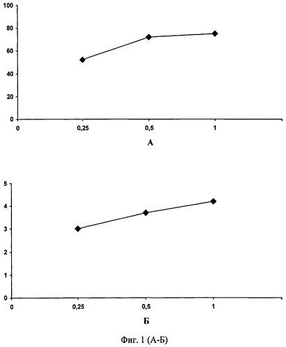 Способ иммунофлуоресцентного анализа белка эксцизионной репарации ercc1 в солидных опухолях человека
