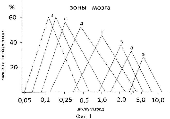 Способ оценки функционального состояния мозга человека