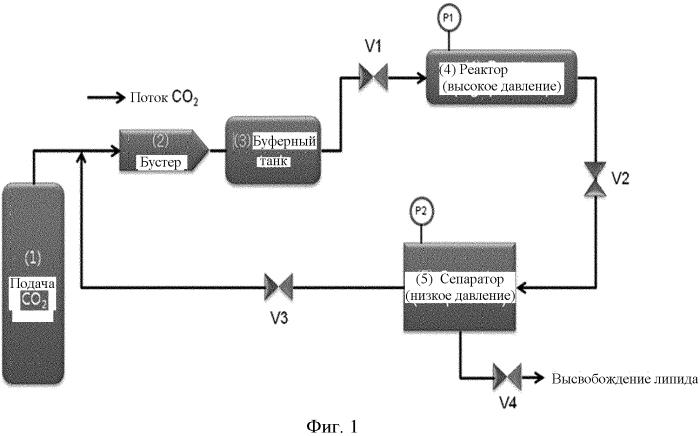 Наночастицы оксалиплатина и способ их получения