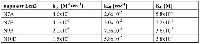 Мутеины липокалина 2 человека (lcn2, hngal) с аффинностью для определенной мишени