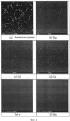 Сплав на магниевой основе с повышенной текучестью и устойчивостью к горячим надрывам и способ его получения