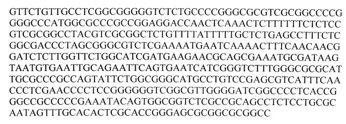 Штамм trichoderma citrinoviride bissett - продуцент антибиотиков-пептаиболов с антигрибной и антибактериальной активностью