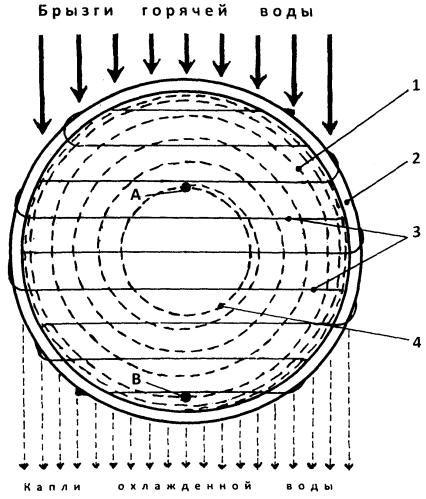 Насадка для тепломассообменного аппарата