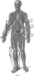 Адаптивный мобильный пространственный реабилитационный робот-манипулятор и способ организации движений и диагностики пациента с его помощью
