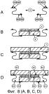 Теплозащитный элемент остекления и способ его изготовления