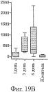 Фармацевтическая композиция, составленная для локального нанесения на поверхность барьера эпителиальной ткани, содержащая антитела, которые проходят через этот барьер
