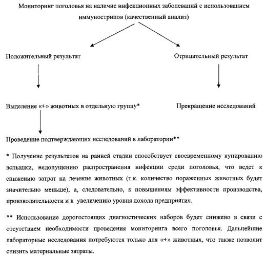 Система экспресс-диагностики и rfid-идентификации биологических объектов