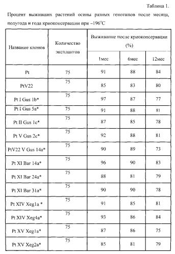 Способ криоконсервации пазушных почек in vitro растений осины