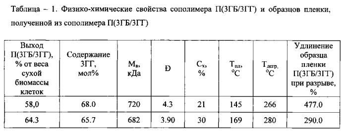 Способ получения сополимера 3-гидроксибутирата и 3-гидроксигексаноата