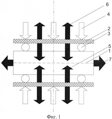 Способ формирования бидоменной структуры в пластинах монокристаллов сегнетоэлектриков
