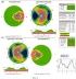 Способ диагностики наследственной оптической нейропатии