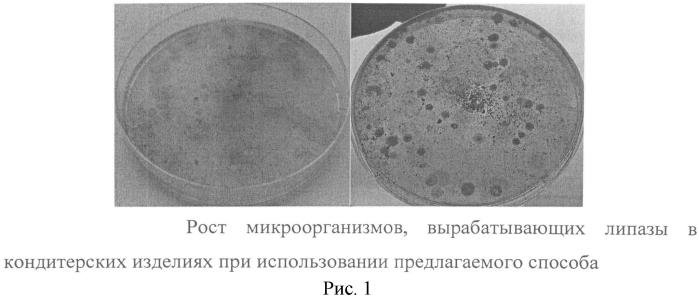 Способ определения в кондитерских изделиях микроорганизмов, вырабатывающих липазы