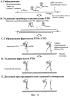 Детекция нуклеиновокислотных последовательностей-мишеней в анализе с расщеплением и удлинением рто