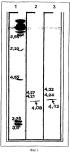 Клонирование, экспрессия и применение кислых фосфолипаз
