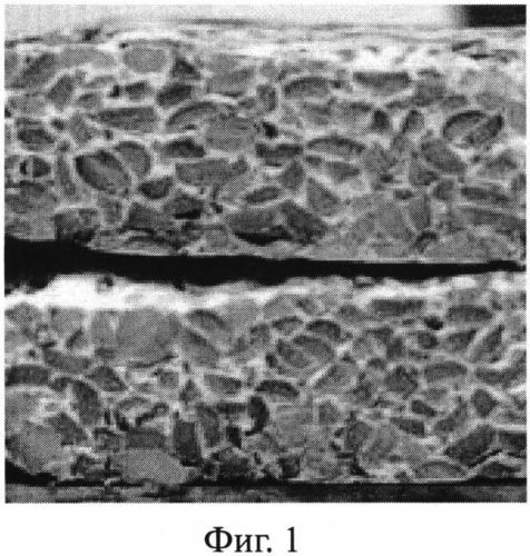 Способ получения пищевого белкового продукта, обогащенного грибным белком