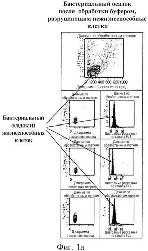 Способ специфического выделения полного днк-содержимого бактериальных возбудителей инфекции