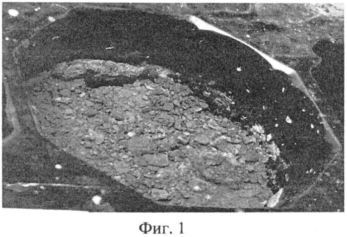 Способ рекультивации поверхности хвостохранилища, содержащего токсичные отходы, с использованием фототрофных бактерий