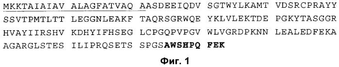 Мутеины липокалина слезы, связывающие альфа il-4 r