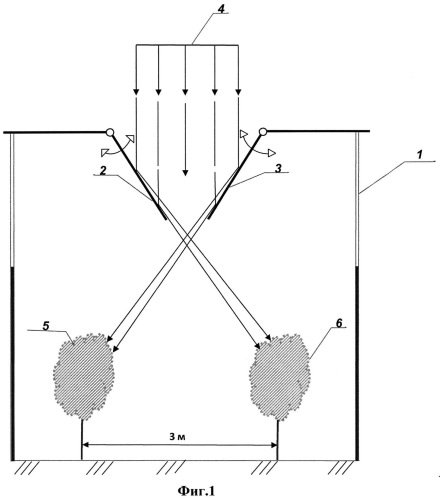 Блочно-модульная модель ведения виноградарства