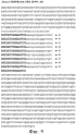 Последовательности crispr бифидобактерий