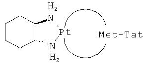 Новые конструкции транспортеров и молекулы-конъюгаты, являющиеся транспортерами карго-молекул