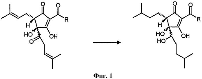 Способ гидрирования изо-альфа-кислот и тетрагидро-изо-альфа-кислот в гексагидро-изо-альфа-кислоты